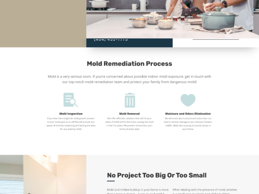 All Mold Solutions – WordPress website design for mold remediation company